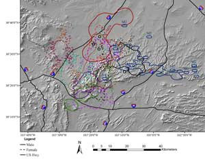 ELK RANGE SIZE AND MOVEMENTS