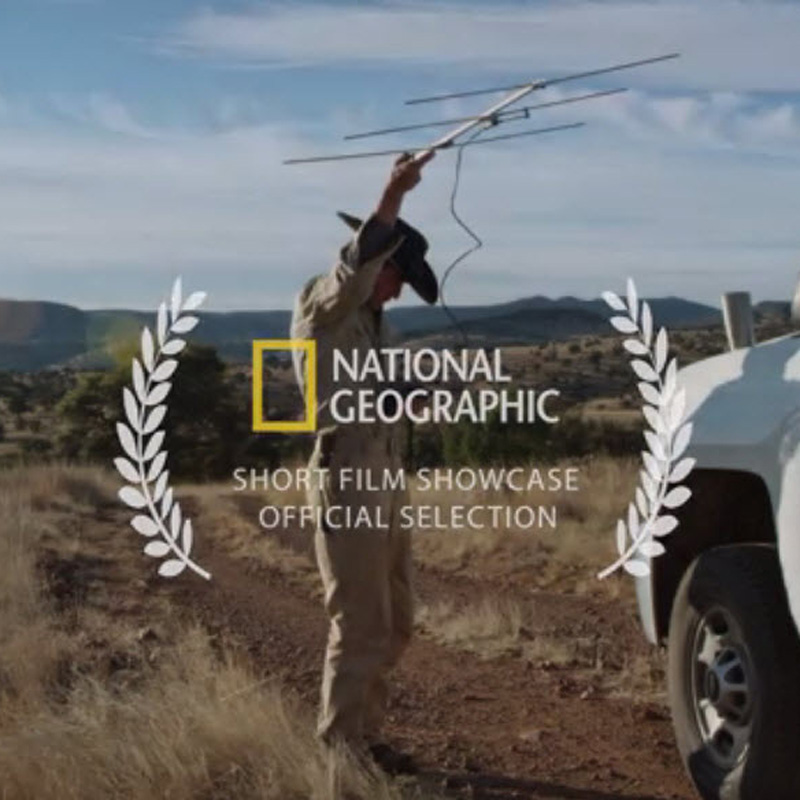 NatGeo Short Film Showcase
