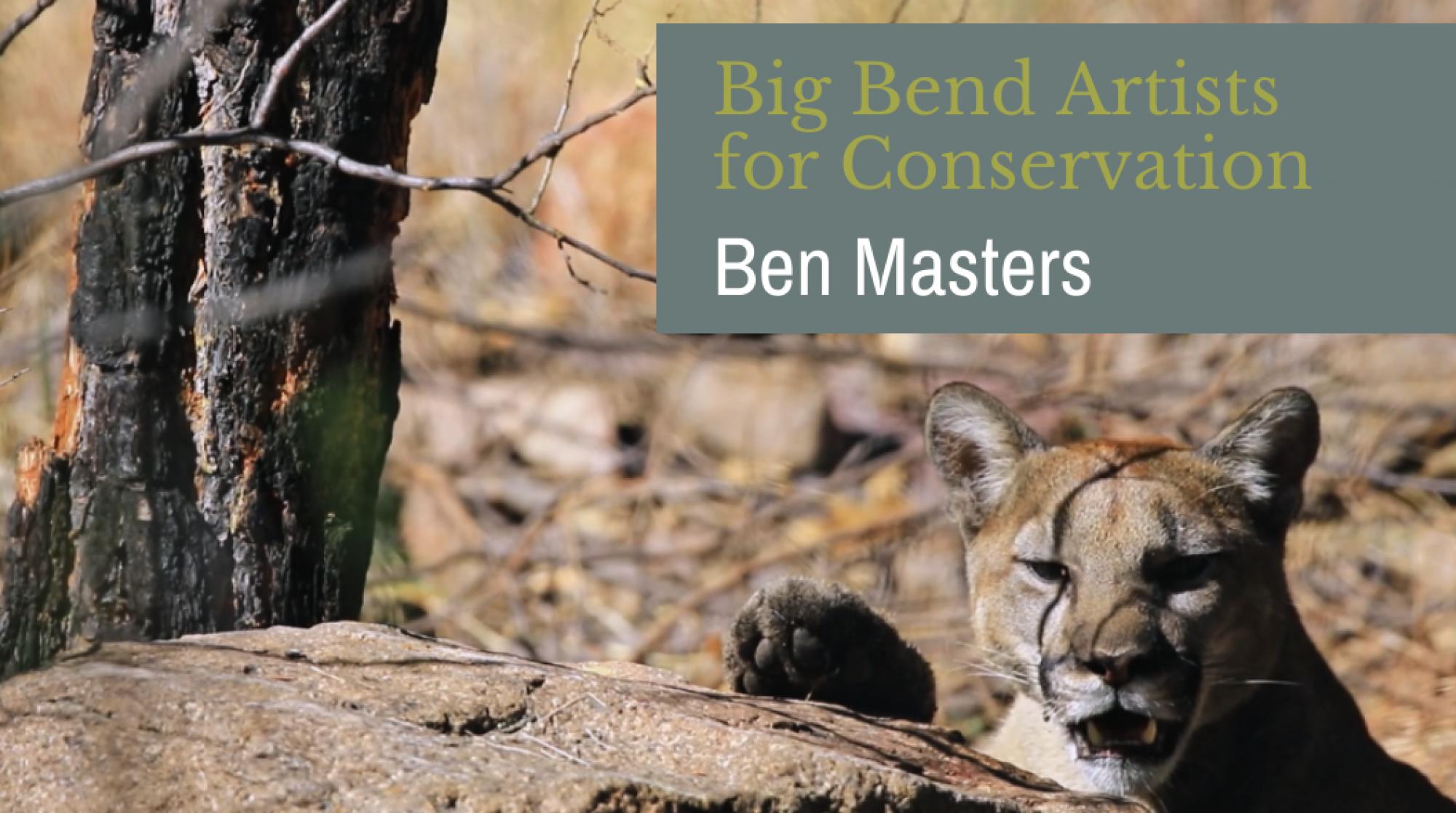 Artists Banner - Ben Masters