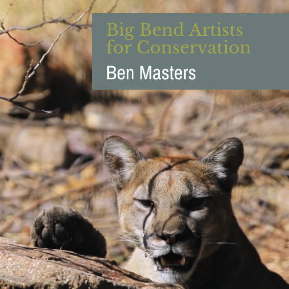 Artists Square – Ben Masters – FINAL
