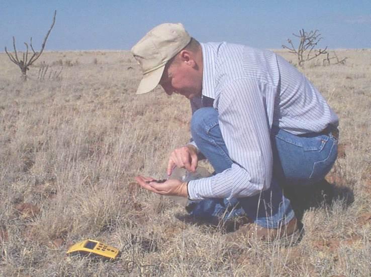 Clay Brewer-Bighorn Food Habit Study 1999